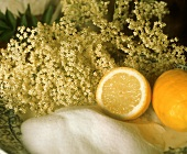 Ingredients to Make Elderflower Liqueur
