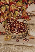 Chestnuts in a Basket with Fall Leaves