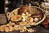 Assorted Wild Mushrooms in a Basket