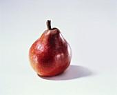 Eine rote Anjou Birne