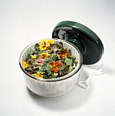 Salad with Nasturtiums in a Salad Spinner