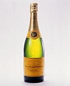 Eine Flasche Champagner (Veuve Clicquot Ponsardin)