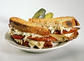 Grilled Kielbasa and Sauerkraut Sandwich