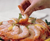 A Hand Dipping a Shrimp into Cocktail Sauce