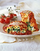 Colorful Spinach Lasagna