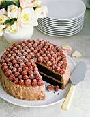 Devil's Food Cake with Raspberries