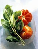 Fresh Basil and Fresh Tomatoes