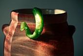 A Long Green Hot Pepper Hanging Off a Pot