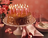 Chocolate Birthday Cake with Lit Candles