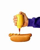 Squeezing Mustard Bottle; Hot Dog