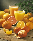 A Glass of Grapefruit Juice and Orange Juice; Citrus Fruit