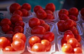 Tomatoes in Plastic Containers at a Farmer's Market