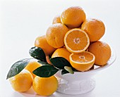 Several Oranges in a White Fruit Bowl