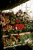 Market Stall in Florence