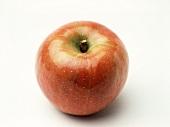 Ein Apfel der Sorte Fuji