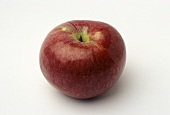 A Single Macoun Apple