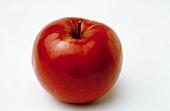 Ein Apfel der Sorte Ida Red