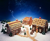 Gingerbread Houses with Gingerbread People