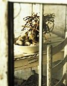 Garlic Bulbs in a Bowl on a Table; Viewed Through Window