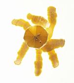 Peeled Lemon with Lemon Peels from Overhead