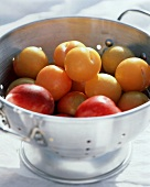 Apricots in a Collander