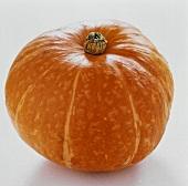 Ein orangefarbener Kürbis (Pumpkin)