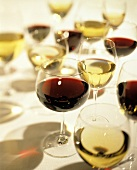 Many Glasses of Red and White Wine