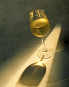 Glass of Chardonnay in the Sunlight