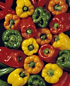 Assorted Types of Bell Peppers
