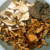Assorted Dried Mushrooms
