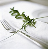 Single place setting with green plant decoration