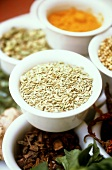 Fennel Seeds with other Spices