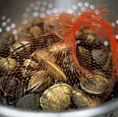 Fresh Clams in Red Netting