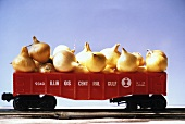 Baby Onions in a Toy Train