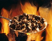 Chestnuts Roasting Over Flame