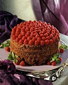 Elegant Chocolate Raspberry Cake