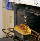A Loaf of Bread in the Oven