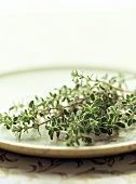 Sprigs of Fresh Thyme