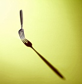 Fork with Shadow