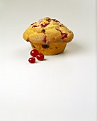 Cranberry Nut Muffin with Cranberries