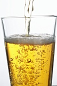 Beer Being Poured into Glass; Bubbles and Clarity