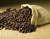 Coffee beans with jute sack