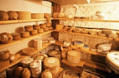 A Room Full of Assorted Cheeses