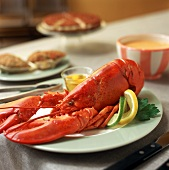 Cooked lobster with melted butter and lemon