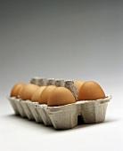 A Dozen Brown Eggs in Carton
