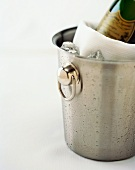 Champagne Chilling in Bucket with Ice
