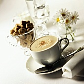 Cappuccino in white cup; brown sugar lumps