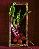 Beetroot in a wooden crate standing on its end