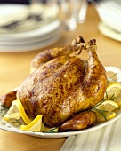 Roast chicken with slices of lemon on platter