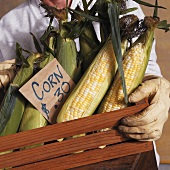Corn cobs in a wooden crate with a price label